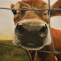 Did Someone Say Cheese Cow Painting