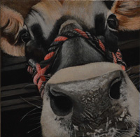 Painitng of cow named Leta