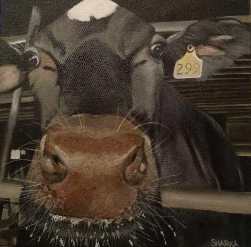 Painintg of cow named Moonbeam