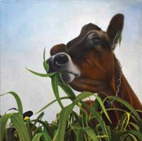 Painitng of cow eating sorghumsudan grass